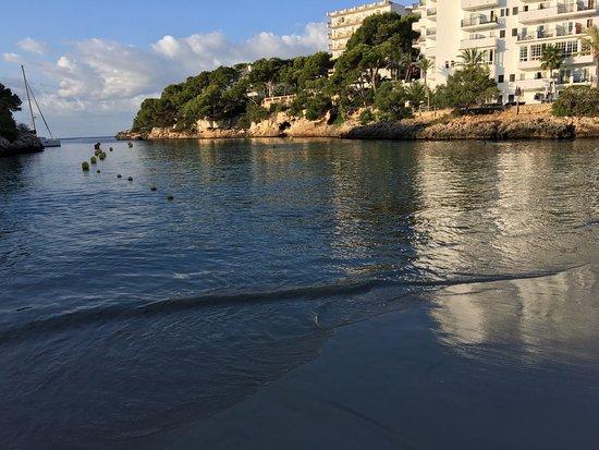 Azul Playa : Hotellet, poolen og stranden