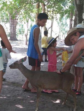 Оаксака, Мексика: UMA VENTANILLA OAXACA