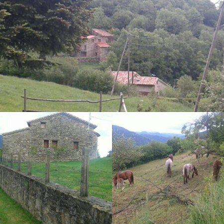 Campelles, España: IMG_20160531_212350_large.jpg
