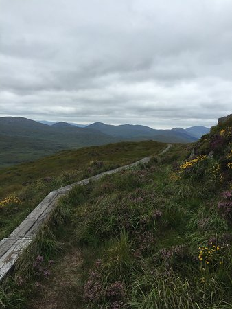 Torc Mountain Walk: photo3.jpg