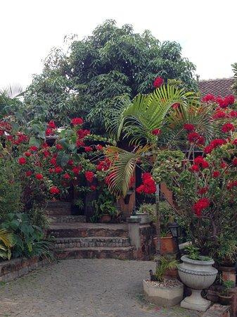 Le Pavillon de l'Emyrne: Garden courtyard