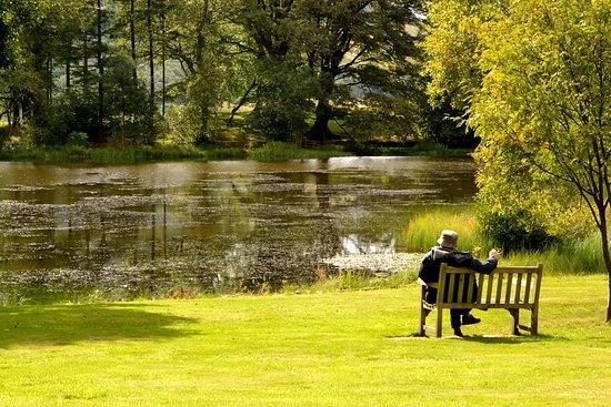 Fintry, UK: étang dans le parc