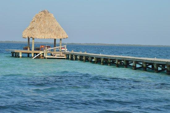 Coco Plum Island Resort: Pier!!