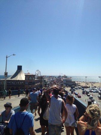 Santa Monica Pier Aquarium: photo1.jpg