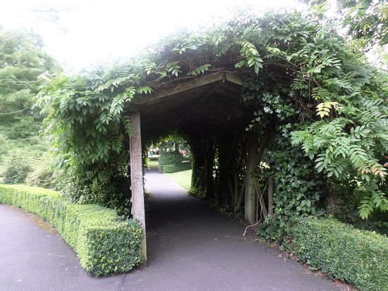 Celtic Park and Gardens: Interesting 'tunnel'