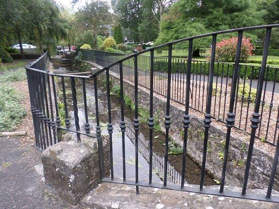 Celtic Park and Gardens: Through the railings ....