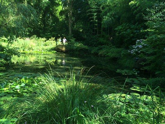 Jardin d'Atmosphere du Petit Bordeaux