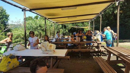 20160815 112804 foto di bordo lago area picnic castel gandolfo tripadvisor - Area tavoli picnic barbecue roma ...