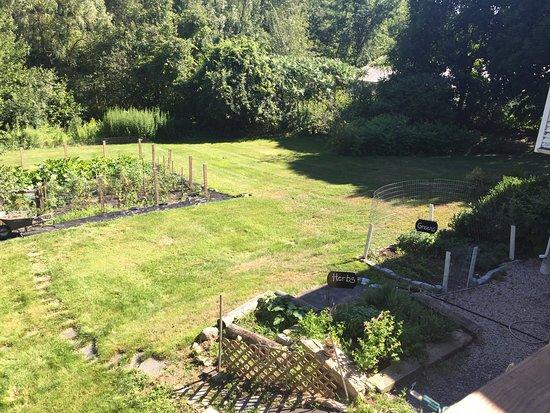 Kittery, ME: garden