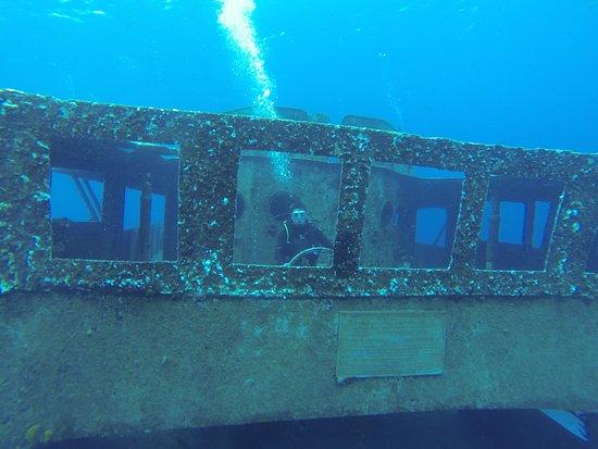 Kittiwake Shipwreck & Artificial Reef: Kittywake bridge