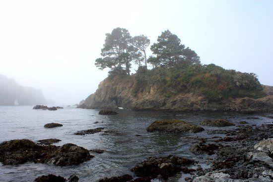 Little River, كاليفورنيا: early morning beach view - short walk