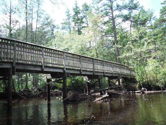 Shamong, NJ: Bridge for walking trail(Batona) getting close to end of paddle