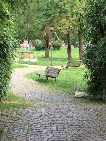 Parco Turani Redona