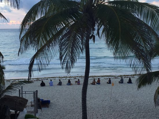 Beach - Picture of Life Source Retreats, Tulum - Tripadvisor