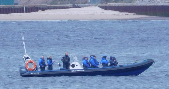 Cromarty, UK: Sarah and a group of dolphin spotters.