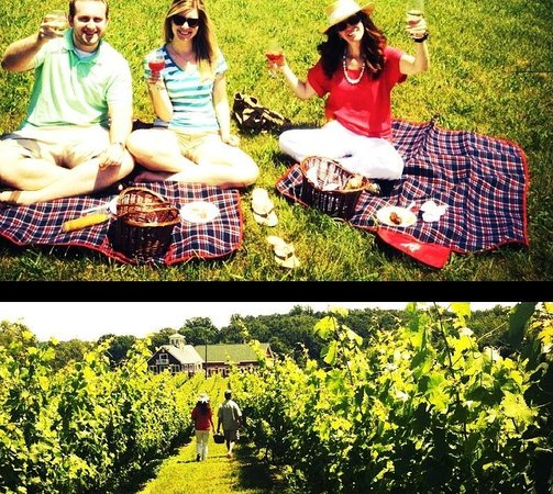 Hume, VA: Enjoy a picnic at The beautiful Philip Carter Winery