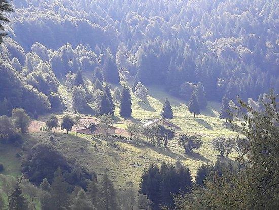 Altopiano di Boniprati : IMG-20160815-WA0001_large.jpg