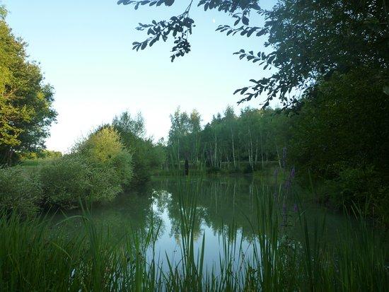 Fontaines-en-Sologne Photo