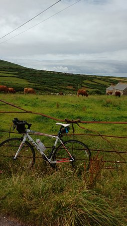 On the road between Lands End and St Ives
