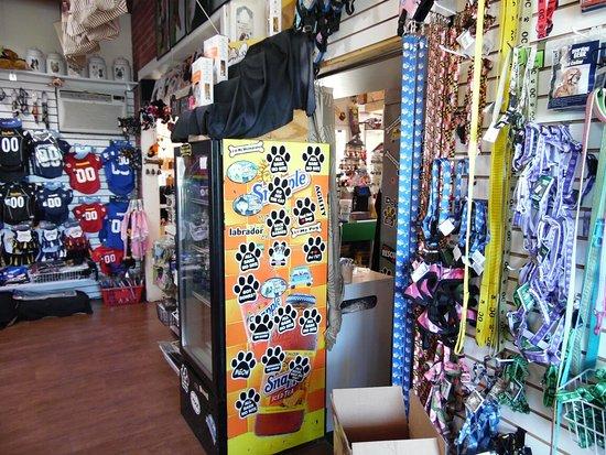 Ocean City Boardwalk Tram: Canine Cafe photos  south end of the boardwalk