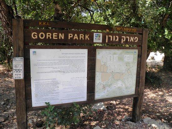 الجليل, إسرائيل: Goren Park