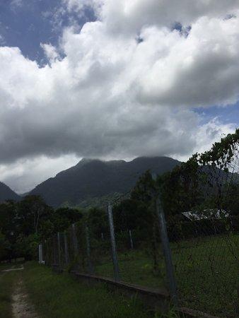 Pico Bonito, هندوراس: photo0.jpg