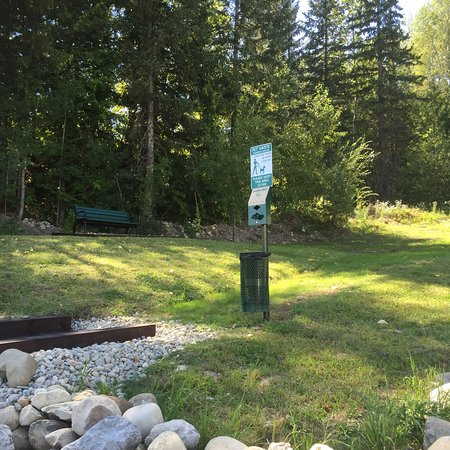 Super 8 Fernie: Super 8 Dog Park