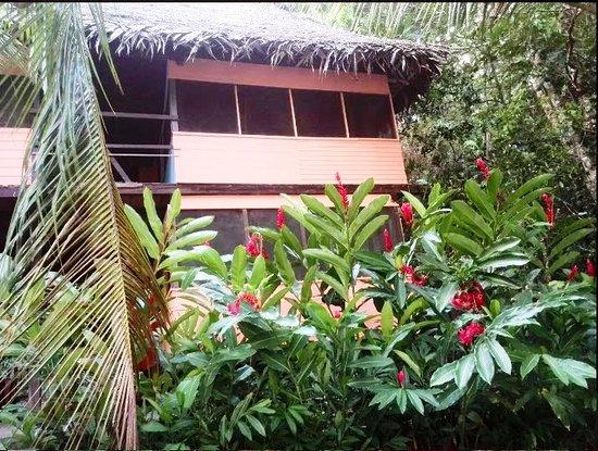 Rio Dulce, Guatemala: Guest House