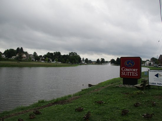 DuBois, Pensilvania: This is a stocked fishing lake in front of the hotel. There are lots of ducks! The kids loved th
