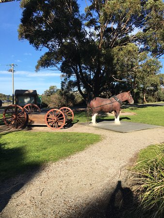 Anglesea, Australië: At the bus pit stop.