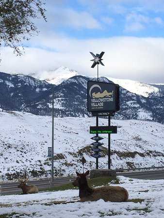 Yellowstone Village Inn: Winter views