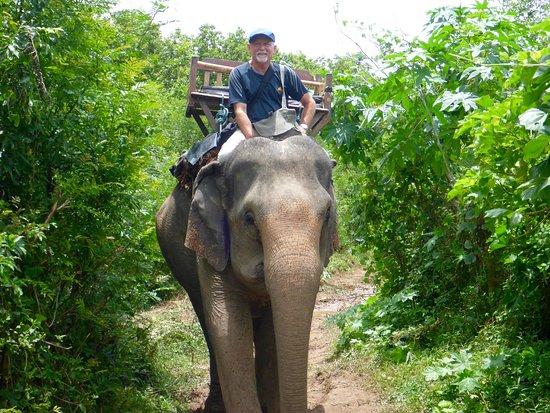 Ban Xieng Lom, Laos: Loads of fun at Elephant Village