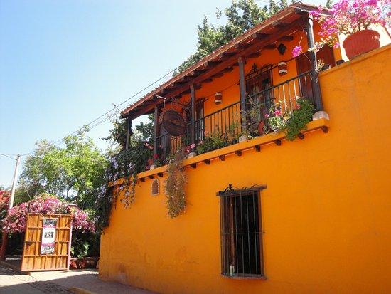 Vista Tours Day Tours: El Quelite Tour