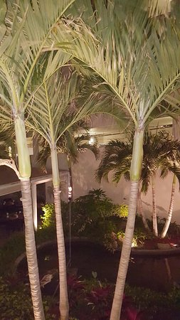 Lido Beach Resort: 20160422_233016_large.jpg
