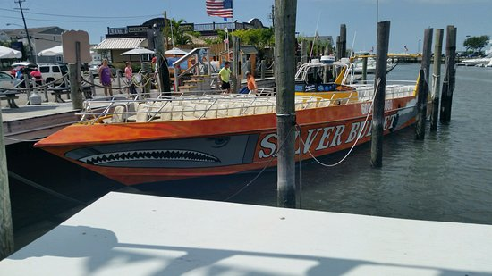 Silver Bullet Tours : Silver Bullet at the dock