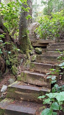 Madeira Park, Canadá: 20160808_115029_large.jpg
