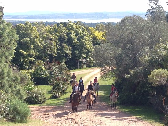 Arboretum Lussich: Riders on the trail