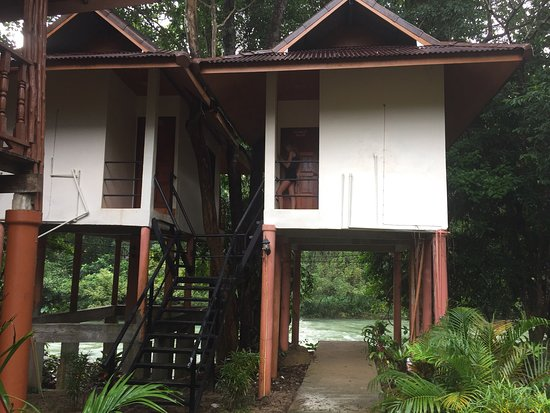 Khao Sok Jungle Huts