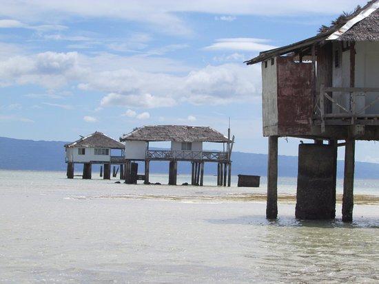 how to go to manjuyod sandbar from dumaguete city