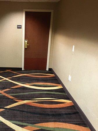 Hampton Inn and Suites Leesburg: Hallway carpet
