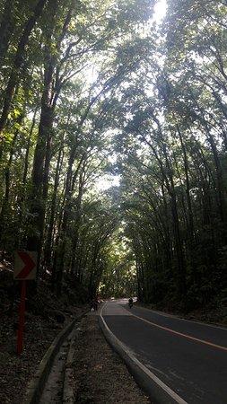 Loboc, Filippinerna: 20160814_145139_large.jpg