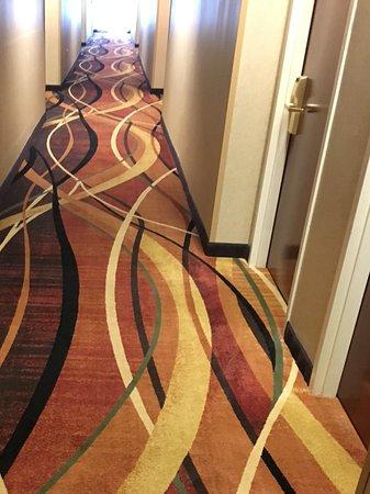 Hampton Inn and Suites Leesburg: Hallway carpet, made you dizzy