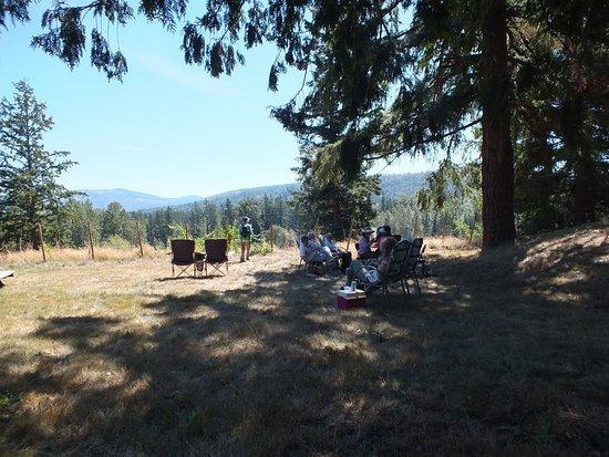 Vartanyan Estate Winery : View of Mt Baker
