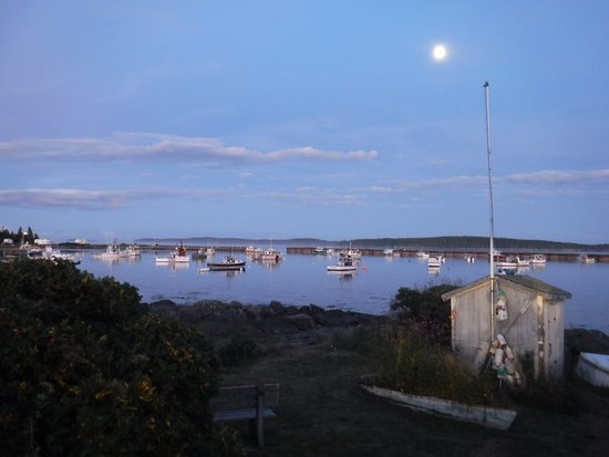 Jonesport, ME: lobster boats in for the night