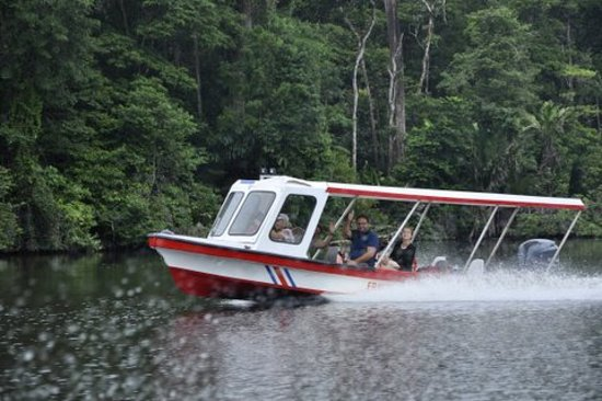 Tortuguero, Costa Rica: One of the riverboats that accompanied us on the trip!