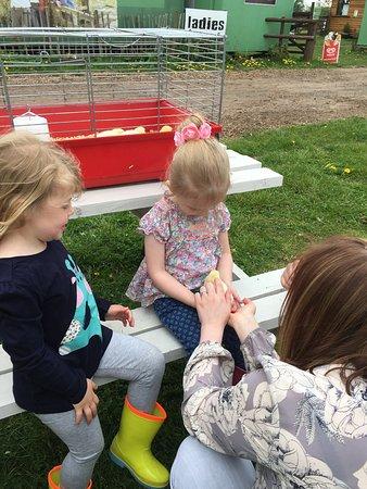 Penkridge, UK: Birthday party at farm.