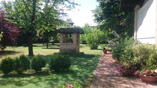 Castelnuovo Rangone, Italia: Garden view