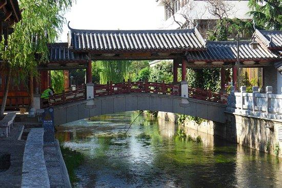 World Heritage Park, Lijiang: P1140083_large.jpg