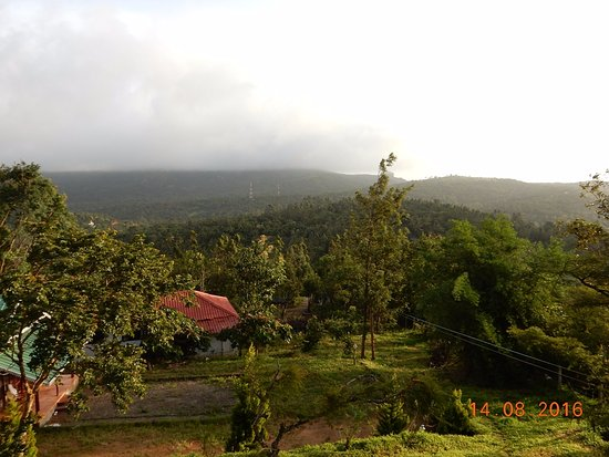 Ramakkalmedu, India: View from the Tree House