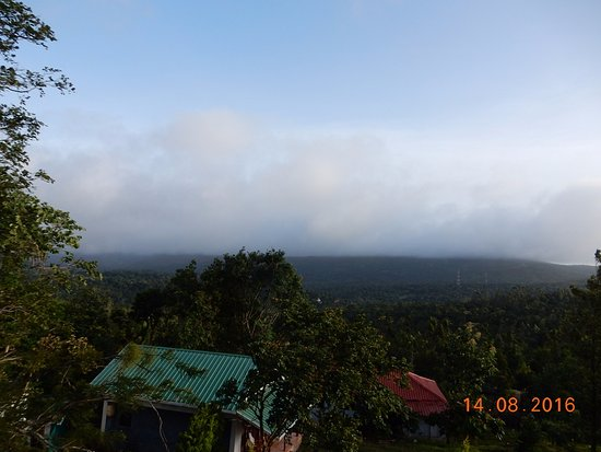 Ramakkalmedu, India: View from Tree House